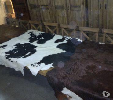 Fotos de Cueros de vaca originales grandes