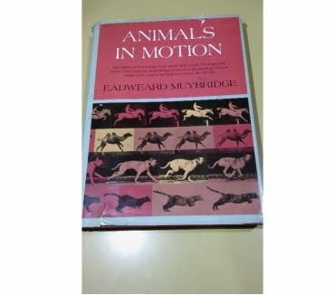 Fotos de LIBRO: ANIMALS INMOTIAN EADWEARD MUYBRIDGE