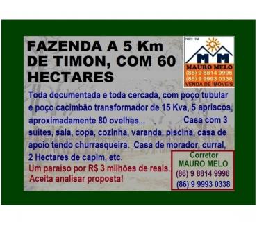 Fotos para === FAZENDA A 5 Km DE TIMON, COM 60 HECTARES ===