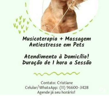 Fotos para Musicoterapia para Pets
