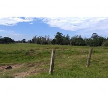 Fotos para Terreno a venda bairro Quarta Linha 05 hectares Criciúma