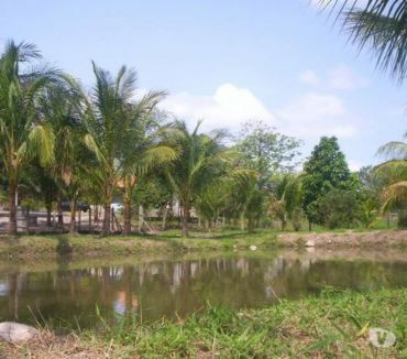 Fotos para Sítio em Itaboraí 398 mil