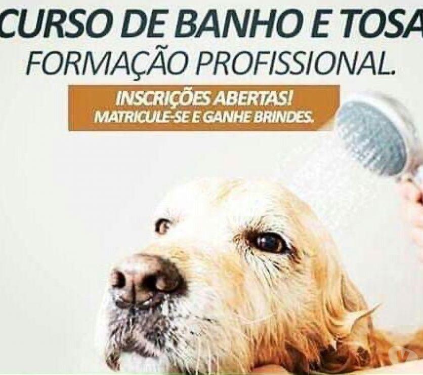 Veterinários - Serviços - Acessórios Sao Jose dos Campos SP - Fotos para Banho e Tosa Salão Pet Shop