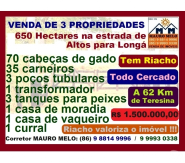 Fotos para 650 HECTARES COM RIACHO