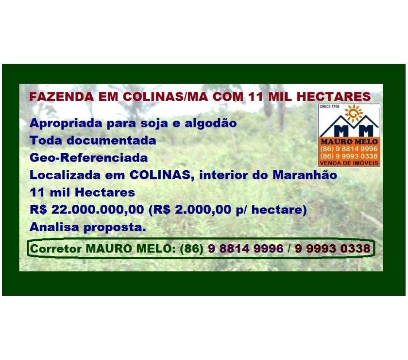 Fotos para === FAZENDA COM 11.000 HECTARES EM COLINAS (MA) ===