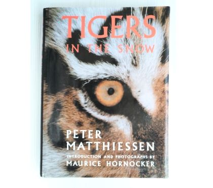 Fotos para Livro Tigers In The Snow - Tigres-siberianos - Peter Matthie