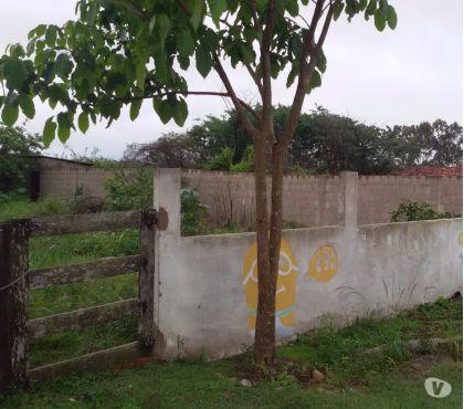 Fotos para Lote 300 M2 murados Perimetral (Ótima Localização )