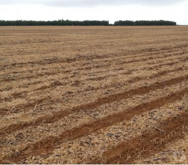 Fotos para Fazenda com 16.531 hectares no Mato Grosso