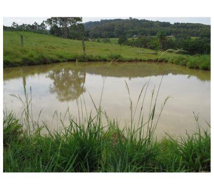 Fotos para Sítio de 36 hectares em Taquara, RS, com 2 casas e açude