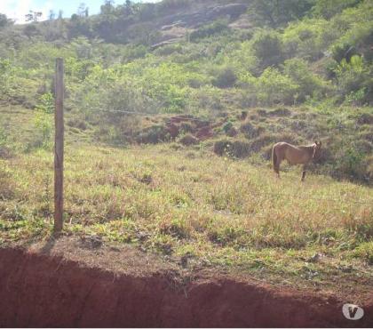 Fotos para Chácaras Poço Fundo
