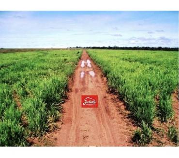 Fotos para Fazenda no MT dupla Aptidão Novo São Joaquim