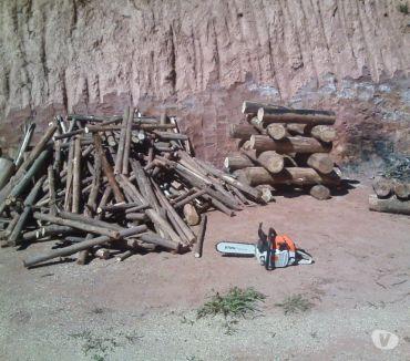 Fotos para Vendo lenha seca de eucalipto