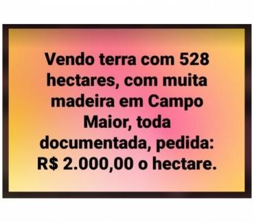 Fotos para BOAS TERRAS EM CAMPO MAIOR PIAUÍ