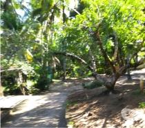 Fotos para Sítio em Imbassai Litoral Norte da Bahia