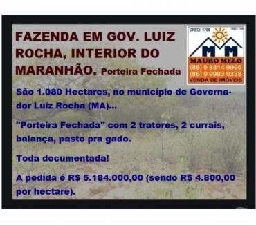 Fotos para === FAZENDA EM GOV. LUIZ ROCHA, INTERIOR DO MARANHÃO ===