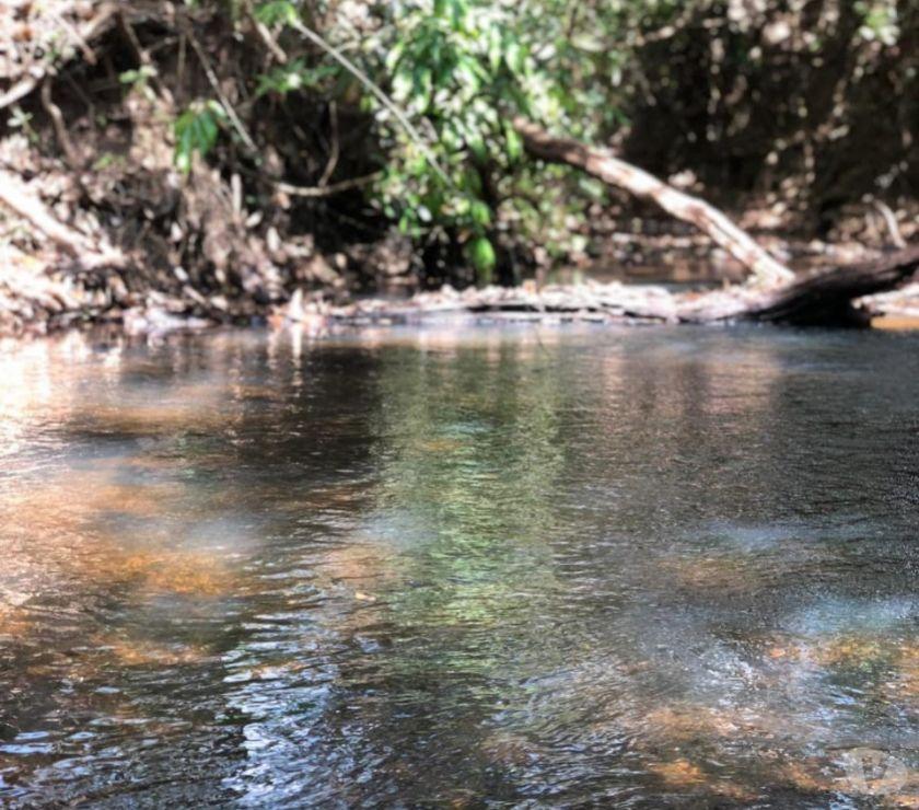 Fazendas - Sitios à venda Hidrolandia GO - Fotos para 20.000m2 com água e sem Benfeitorias em Hidrolândia
