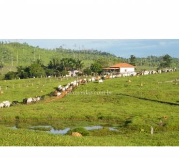 Fotos para Fazenda em Alto Paraiso - Ro - 1600 hectares