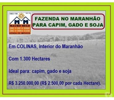 Fotos para === FAZENDA NO MARANHÃO PARA CAPIM, GADO E SOJA ===