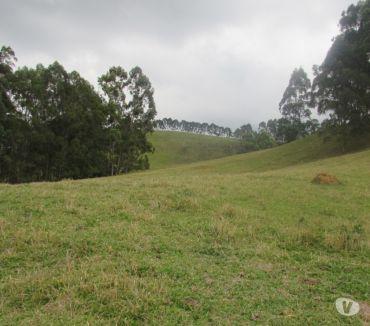 Fotos para Sítio em Camanducaia MG com 5,0 alqueires e duas casas