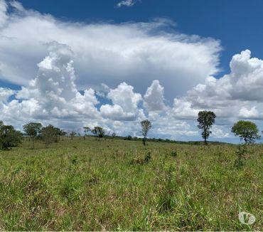 Fotos para OPORTUNIDADE DE FAZENDA COM 1.500 HECTARES EM TESOURO MT
