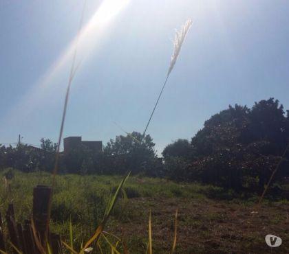Fotos para Aracoiaba da Serra- Venha morar junto co a Natureza