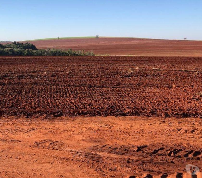Fazendas - Sitios à venda Londrina PR - Fotos para LINDA FAZENDA COM 150 ALQUEIRES ENTRE MARINGÁ E LONDRINA PR