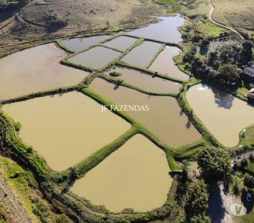 Fotos para Sítio em Bicas - MG - 65 hectares