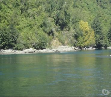 Fotos de Precioso Campo de 5 hás junto a Río San Pedro-Navegable