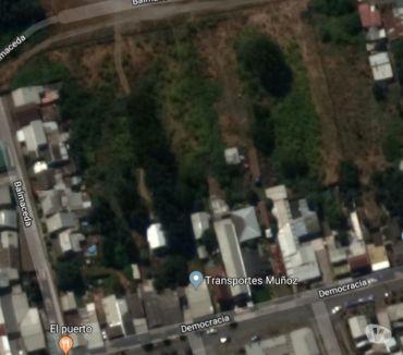 Fotos de Vendo terreno en Coronel