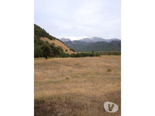 Fotos de Hermosa parcela de 12,5 hás. con vista a Sierra Nevada
