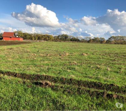 Fotos de Extraordinario campo de 40 hás ubicado en San Carlos y agua