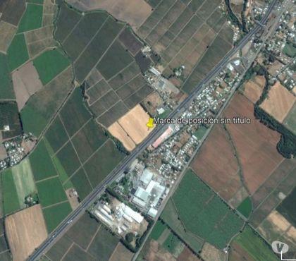 Fotos de Preciosa parcela de 8 hectáreas San Fernando orilla Ruta 5