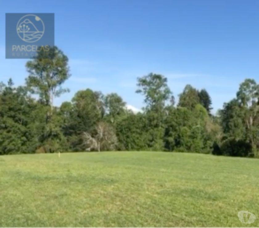 Parcelas en Venta Llanquihue Frutillar - Fotos de HERMOSAS PARCELAS EN FRUTILLAR 5000M2 ROL PROPIO