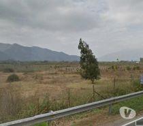 Fotos de Extraordinario campo de 65 has.junto a carretera ( LaCalera)