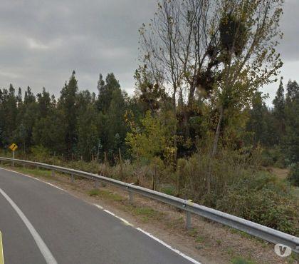 Fotos de Extraordinario campo 140 has.junto a carretera ( LaCalera)