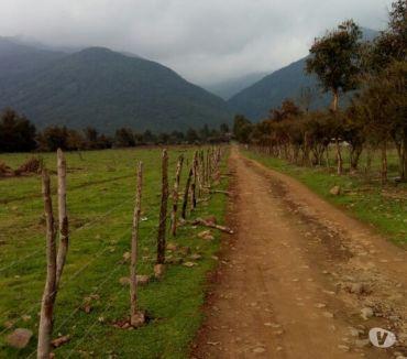Fotos de Extraordinario Campo de 914 hectareas en Teno-Curicó