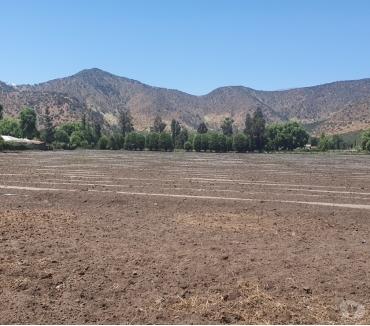 Fotos de Colonia Kennedy, 4 hectáreas uso agrícola.