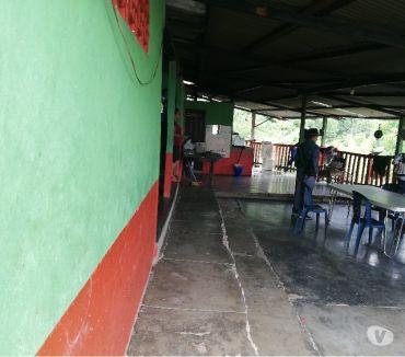 Fotos de Finca Cacaotera Y Aguacatera En San Vicente De Chucuri.