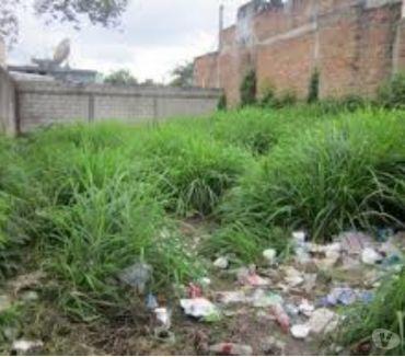 Fotos de Limpieza de Terrenos; Desmonte de Terrenos Los Mochis