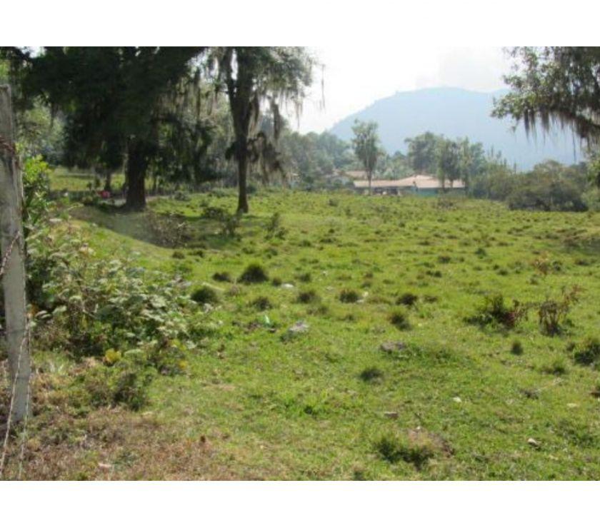 Fotos de Vende terreno en el Vallecito, Mérida