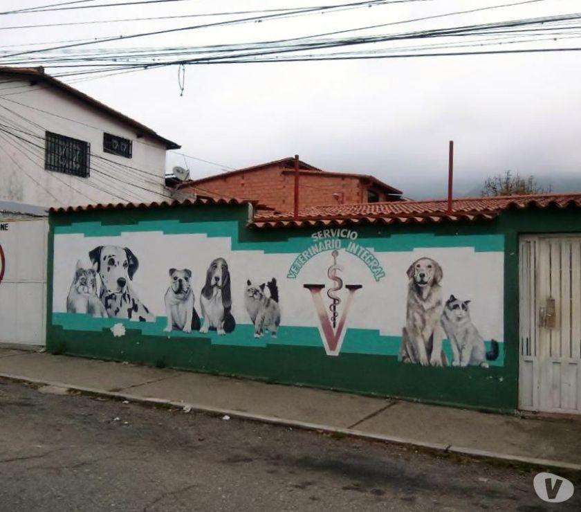 Fotos de TERRENO COMERCIAL EN MERIDA