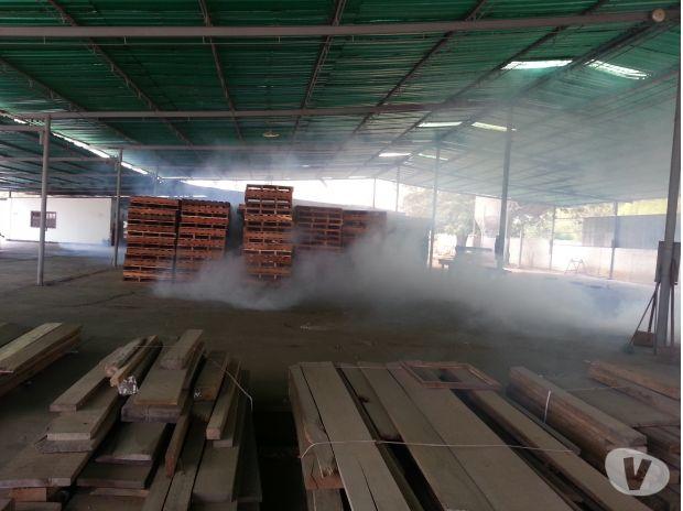 Fotos de Fumigaciones Eliminamos Plagas Masticadoras